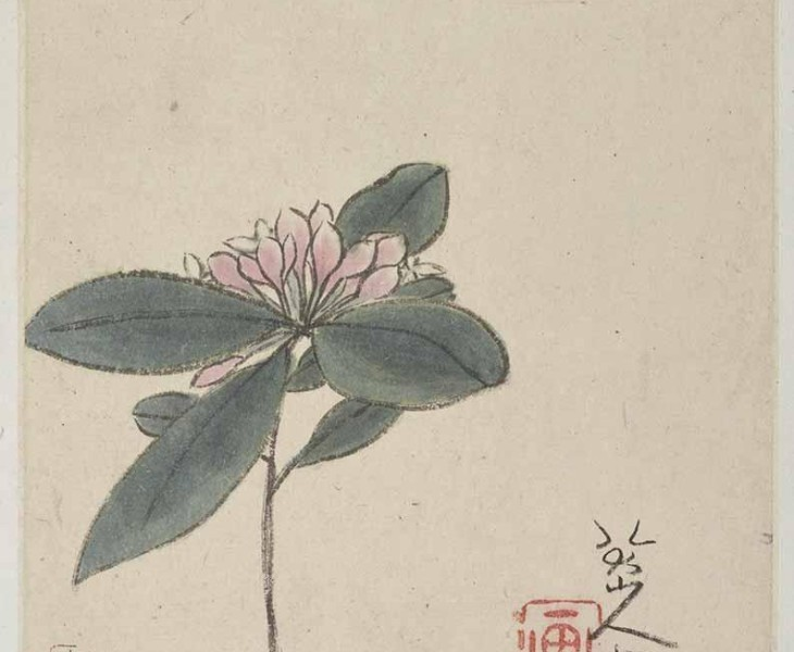 Enigmas: The Art Of Bada Shanren (1626-1705)